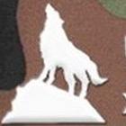 清遠玄真雪狼國際拓展基地_狼性團隊培訓專家