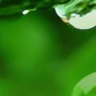 佛山市志升企业管理咨询机构_是一家志存高远,勇于创新的管理咨询机构